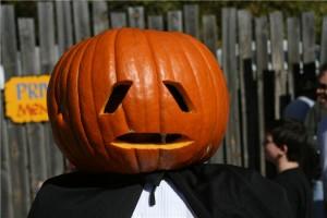 Pumpkin - dreamstimefree_1836036